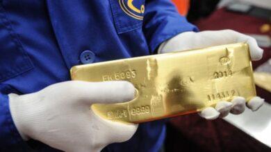 Photo of Амолада алдағы жылдары алтын өндіру көлемі ұлғаяды