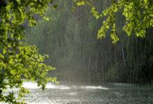 Photo of 5 тамызға арналған ауа райы болжамы