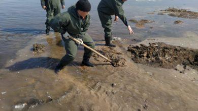 Photo of 179 тысяч кубометров талых вод откачано в Целиноградском районе