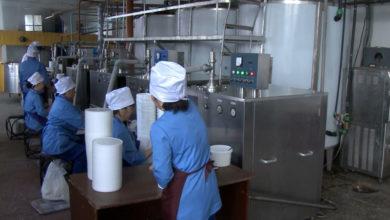 Photo of Кокшетауский завод увеличивает производство молочной продукции