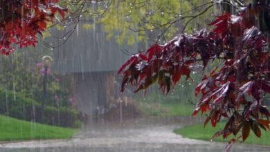 Photo of 25 июня местами по республике ожидаются дожди и грозы, возможен град