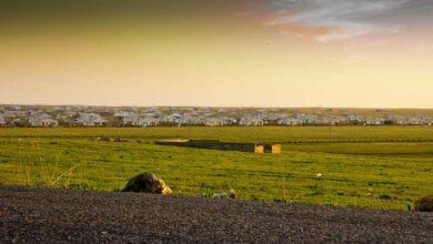 Photo of «Ауыл – Ел бесігі»: 29 проектов реализованы в  трех райцентрах Акмолинской области