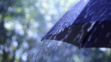 Photo of Неустойчивая погода ожидается 29 июля в Казахстане