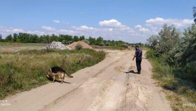 Photo of Вышла на пробежку и пропала: Спасатели ищут подростка в Шортанды