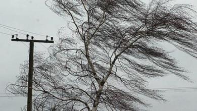 Photo of Дожди, грозы и шквалистый ветер прогнозируются в Казахстане 25 июля