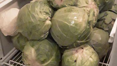 Photo of «Мы вас не бросим!»: Мясо и овощи для пациентов с Covid-19 от фермера