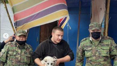 Photo of Атбасарские спасатели освободили собаку, застрявшую между вагонами