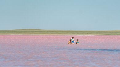 Photo of В розовом озере Кобейтуз нашли опасные вещества