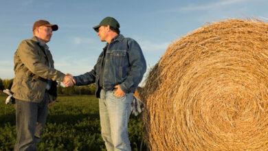 Photo of Сельхозкооперативы региона получили субсидий на 358 миллионов тенге