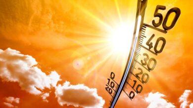 Photo of Сильная жара сохранится в Акмолинской области