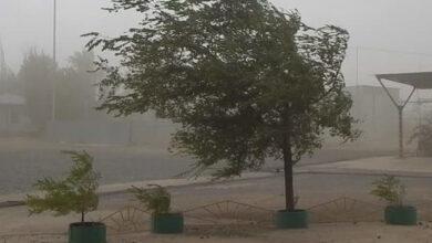 Photo of Какой будет погода в области 25 сентября