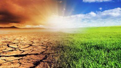 Photo of Климат Казахстана теплеет в два раза быстрее, чем глобальный