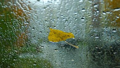 Photo of Как антициклон повлияет на погоду в РК
