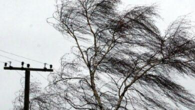 Photo of Сильный ветер в Акмолинской области прогнозируют синоптики