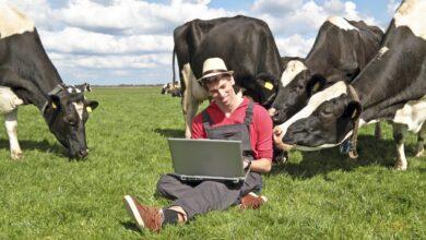 Photo of Куда сельчане могут пожаловаться на плохое качество интернета
