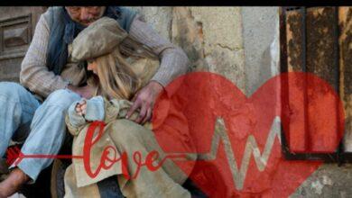 Photo of «Доброе сердце» призывает кокшетауцев помочь бездомным людям