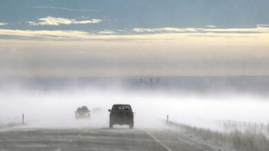 Photo of Низовая метель ожидается в Акмолинской области