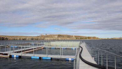 Photo of Рыбоводческий комплекс по выращиванию форели заработал в Степногорске