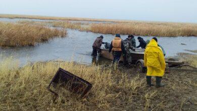 Photo of Двое утонули, ищут третьего: рыбака пятые сутки ищут акмолинские спасатели