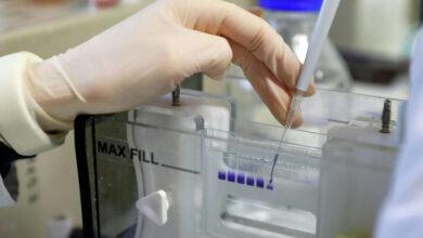 Photo of Казахстанская вакцина против коронавируса QazCoVac-P готова к испытаниям на людях