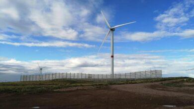 Photo of Новая ветростанция заработает в Ерейментау в День Независимости страны