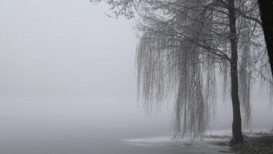 Photo of Туман, низовая метель и усиление ветра ожидают акмолинцев 4 декабря