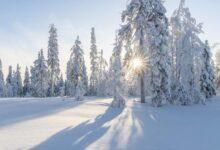 Photo of Как антициклон повлияет на погоду в Казахстане?