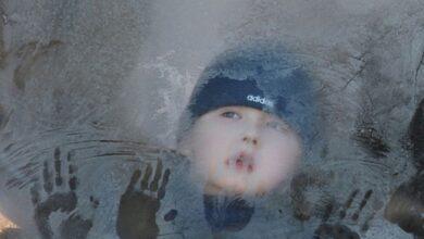 Photo of Пятилетний ребенок чуть не замерз на трассе в Жаксынском районе