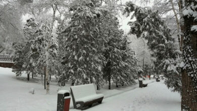 Photo of Прогноз погоды на 8 марта