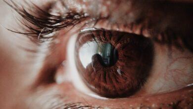 Photo of Год с коронавирусом глазами журналиста «Aqmola News»