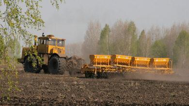 Photo of Массовый сев в основных зерносеющих регионах начнется в середине мая – Минсельхоз
