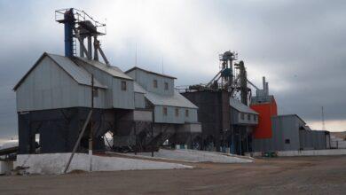 Photo of «К концу мая закончим»: «Журавлёвка-1» готова к посевной