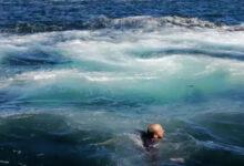 Photo of Дочь сняла на видео, как отца чуть не проглотил кит в Южной Африке