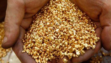 Photo of Деньги, золото и пистолеты: ОПГ, обворовывавшее промышленное предприятие, задержали в Акмолинской области