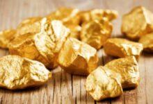 Photo of Сельчан в Акмолинской области обвиняют в разграблении золотых рудников