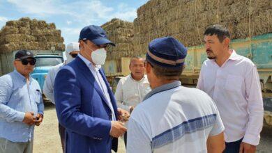 Photo of Новый глава Минсельхоза отправился на запад Казахстана решать проблемы, вызванные засухой