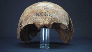 Photo of Ученые установили старейшую жертву чумы