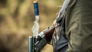 Photo of 38 «природных вредителя» выявили в Акмолинской области