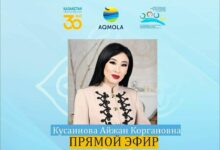 Photo of Ровесники Независимости: новый проект стартовал в Акмолинской области