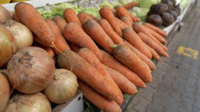 Photo of Дефицита не будет: Минсельхоз намерен впрок запастись морковью и картофелем
