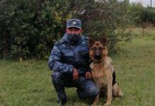 Photo of Собиравшего коноплю подростка задержали в Акмолинской области