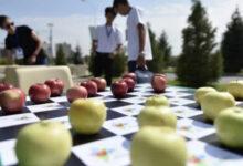Photo of Алматинцы отмечают День города. Вспоминаем историю праздника до пандемии