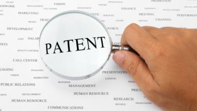 Photo of Как получить патент на селекционное достижение? – интервью эксперта