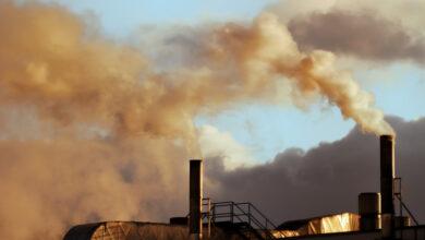 Photo of Загрязнение воздуха может вызвать ожирение у детей – ученые
