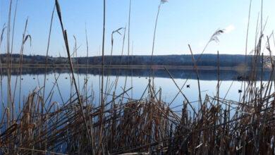 Photo of О мерах безопасности в сезон охоты и рыбалки напомнили акмолинские спасатели